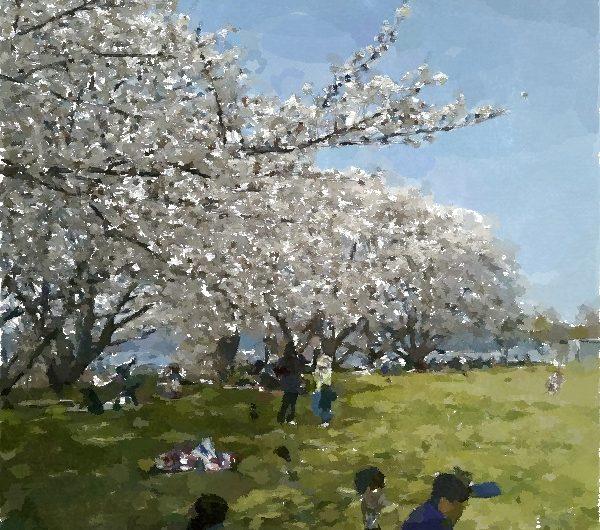 【絵画調変換No123】大塚山公園の桜/水彩画