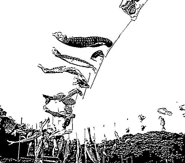 【絵画調変換No125】意宇川上空で泳ぐこいのぼり/インク画