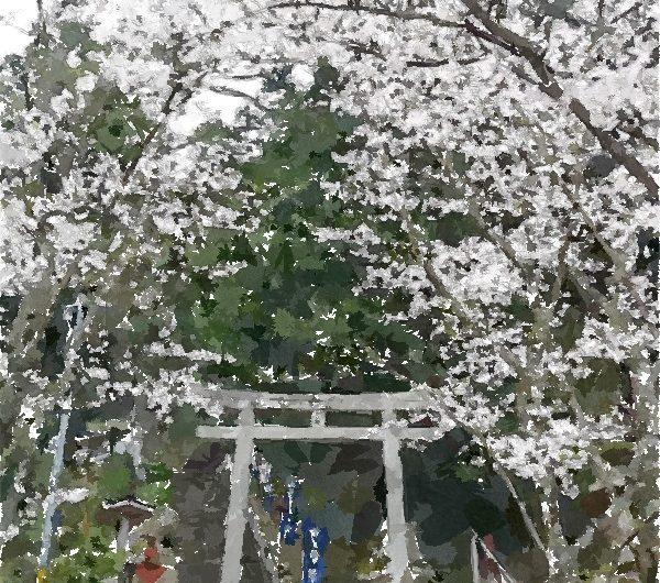 【絵画調変換No129】菅原天満宮鳥居とサクラ/水彩画