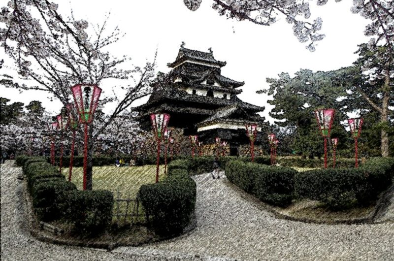 20130401松江城本丸の桜/色鉛筆画