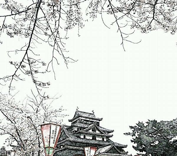 【絵画調変換No073】桜と松江城/色鉛筆
