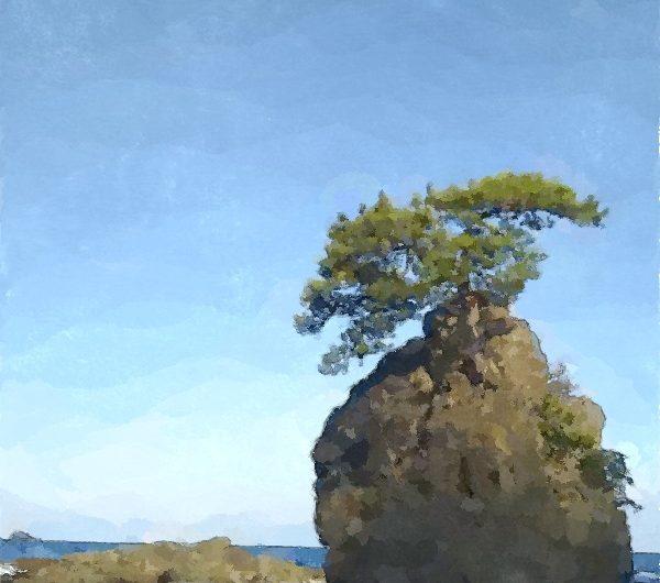 【絵画調変換No111】美保関町惣津海岸の一本松/水彩画