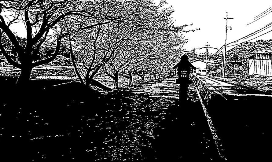 【絵画調変換No122】神魂神社参道の桜/インク画